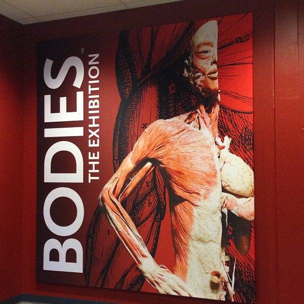 BODIES: THE EXHIBITION - Buena Park