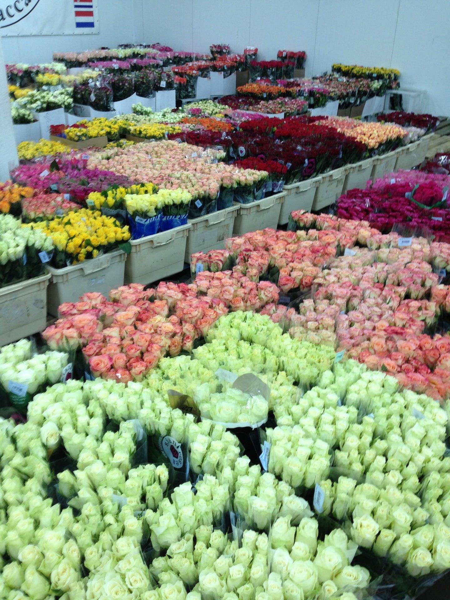 Сад екатеринбург, цветы оптом москва блэк баккара