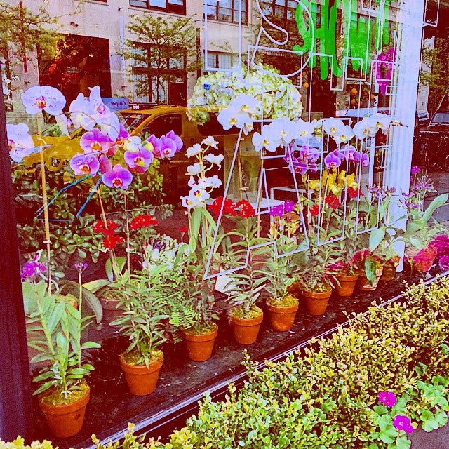 Angelica Flowers And Events,event design,floral arrangements,floral delivery,wedding floral arrangements,west village