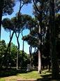 Villa Borghese_6