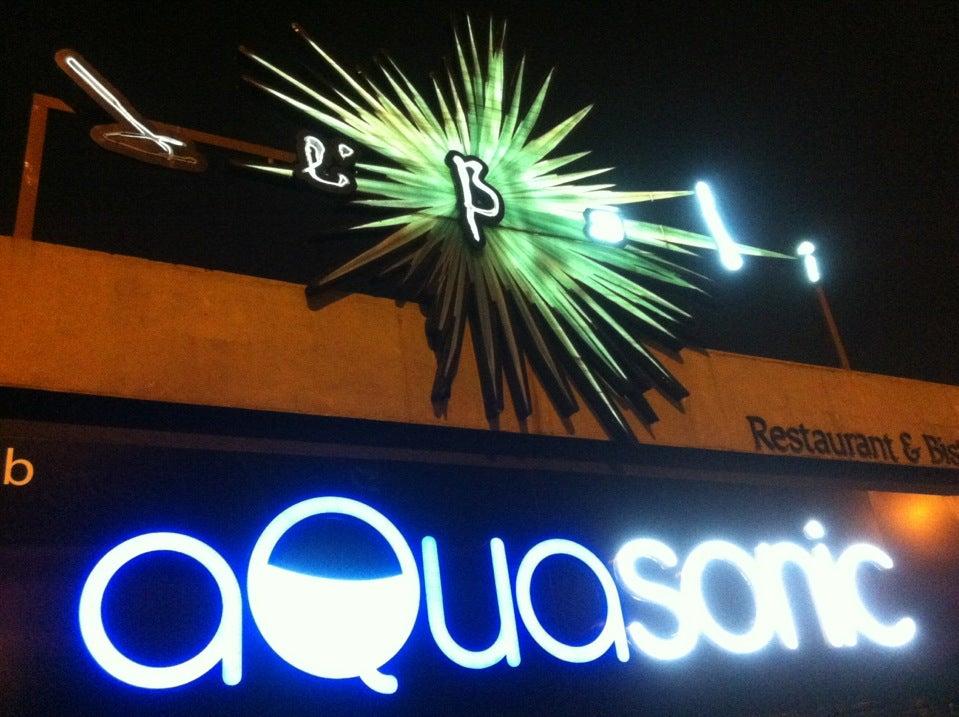 Aquasonic Jb