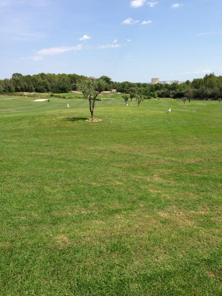 Golf Son Quint