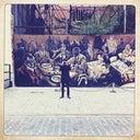 alice-mccolm-78411099