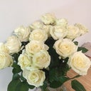 anna-emelyanova-59512691