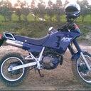 alma-droog-7404839