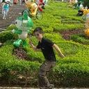 jim-tsang-4604104