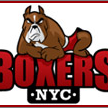 Boxers NYC