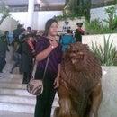 Indri Purple