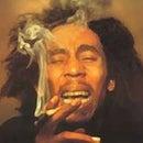 Goos Marley