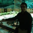 Abdallah A.Jaber