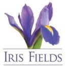 Iris Fields NYC