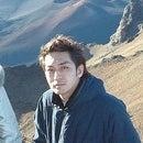 yo hashimoto