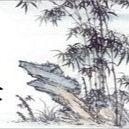 Shao wei Lee