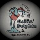 Divot Dolphin