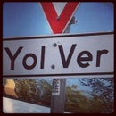 BelcE Yolver