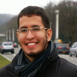 Rodolfo Luís