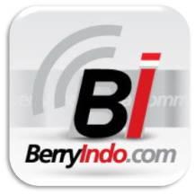 BerryIndo