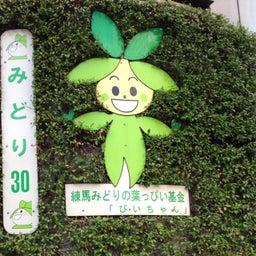 Youhei Aoki