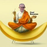 Andrew Peters