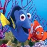 Nemo Doris