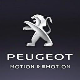 Didier Peugeot BeLux