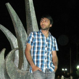Mehmet ARI