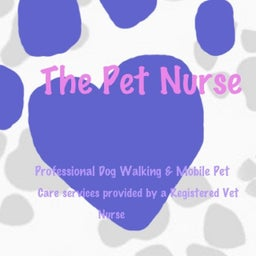 Bryony The Pet Nurse