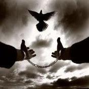 Barış Boynueğri