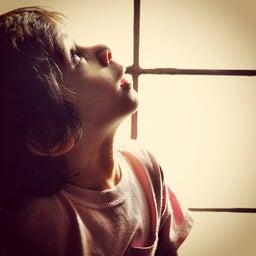 Noor Mahmoud