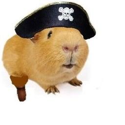 Evil Captain Fluffy
